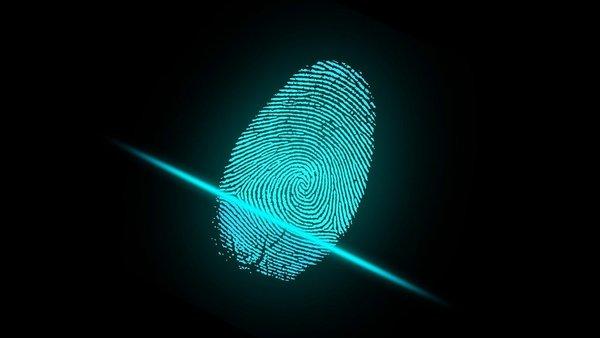 Large fingerprintcopy