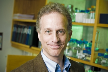 Dr. Paul Lieberman and other researchers found that telomere manipulation might be a way to fight viruses.