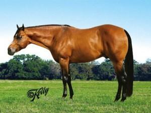 Breeder sued for $1M after horse injured during semen