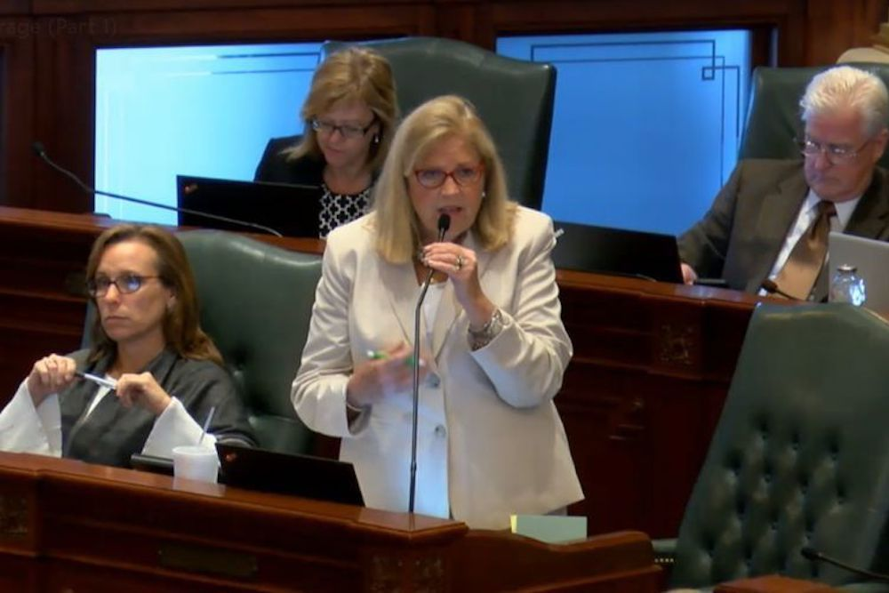 Rep. Patricia Bellock (R-Hinsdale) during the May 29 House floor debate