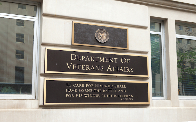 AMA discussion seeks to improve veterans affairs, stop opioid abuse.