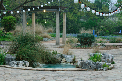 Visitors to the Lady Bird Johnson Wildflower Center can enjoy flowering native plants near the Hill Country pond in the front courtyard as they enter the center grounds.