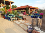 Miguel's Gallery and Garden features Mexican pottery and plants.