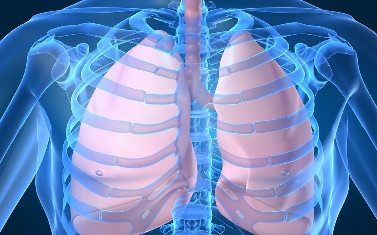 FDA grants Breakthrough Therapy Designation to Boehringer Ingelheim's new lung cancer therapy.