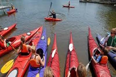 Medium paddle