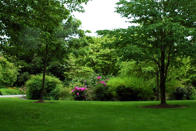 A perfect lawn doesn't happen by itself, but requires seeding and care.