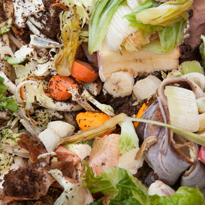 Food waste can be reborn as compost.
