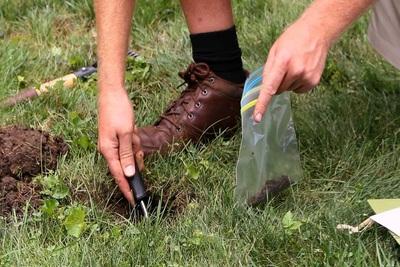 Medium soil