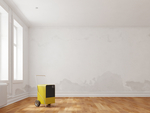 Dehumidifiers can reduce the spread and growth of mold.