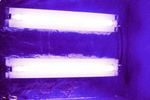 Ultraviolet lights, like the ones here that are used for produce, can also be used to purify the air in a home.