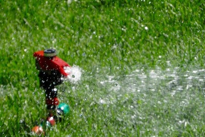 Conventional sprinklers waste a lot of water and do little for the actual plants.