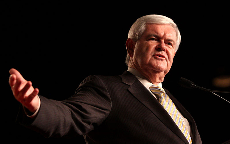 Newt Gingrich has formed a bipartisan partnership to raise awareness and support for those suffering from mental illness and addiction.