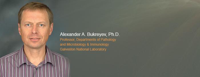 Professor of pathology, mocrobiology and immunology, Alexander Bukreyev,