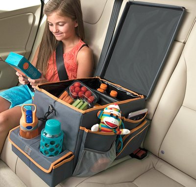 High Road Kids Car Seat Cooler and Back Seat Organizer