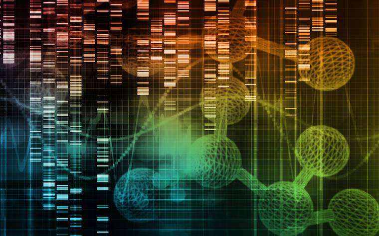 Scientists have managed to sequence almost all of the genomes of life-threatening pneumonia fungus.