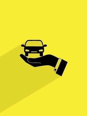 Large driverslicense