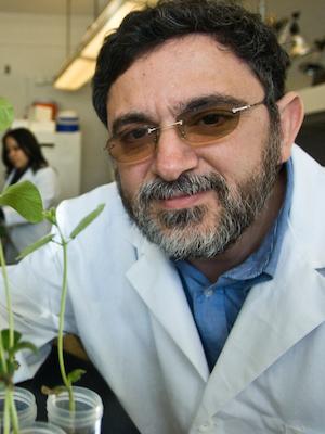 SIUC Associate Professor Ahmad Fakhoury
