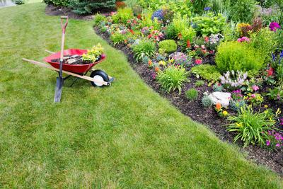 Medium landscaping