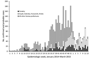 This graph shows the cases in Conkary, Guinea, and surrounding areas.
