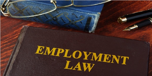 Large employment law