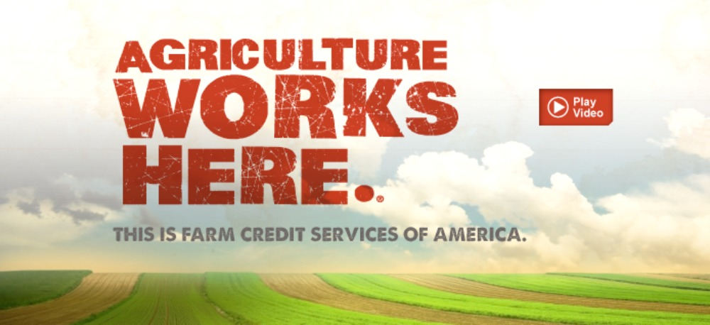 FCS America's board represents a wide variety of agricultural professionals in four states.