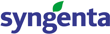 Chief partners with Syngenta, provides rebates to Enogen corn farmers