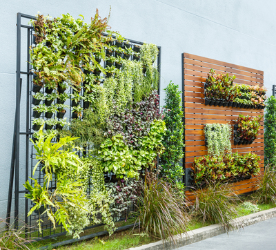 Vertical gardening is a great option for those who are land-challenged.
