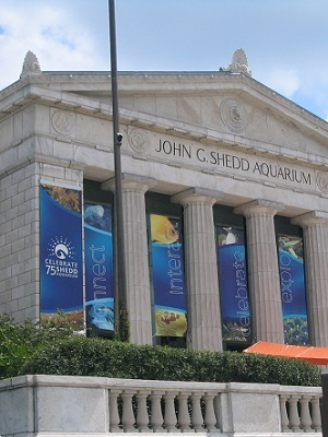 Shedd aquarium chicago august 2005