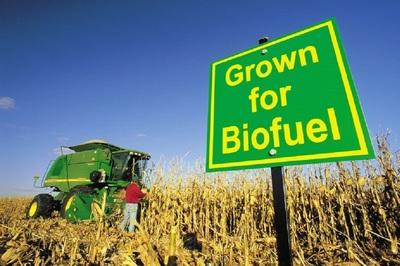 The group suggests abandoning the 15 billion-gallon biofuel requirement.