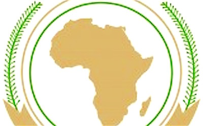 Conference discusses African energy needs