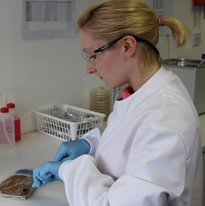 Daily Laboratories achieves accreditation renewal.