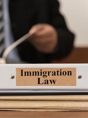 Large immigrationlaw