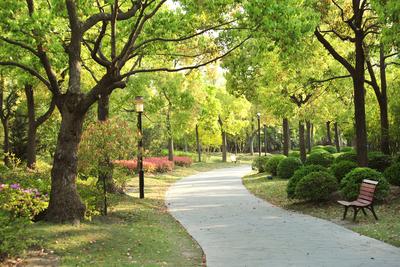 Medium park 01