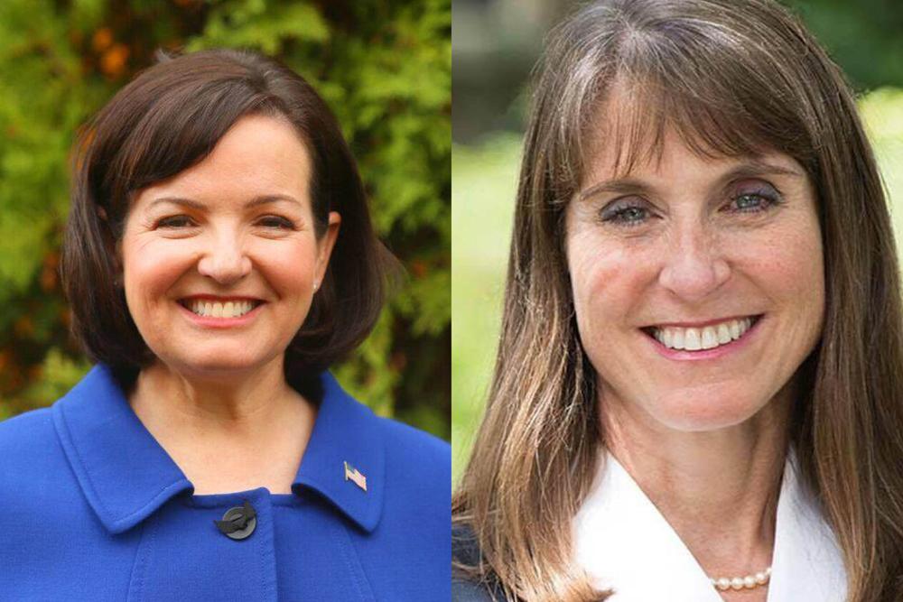 Republican Joan McCarthy Lasonde lost to Democrat Laura Fine.