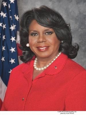 Cook County Circuit Clerk Dorothy Brown