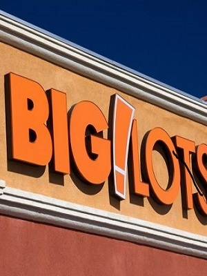 Large biglotslogo