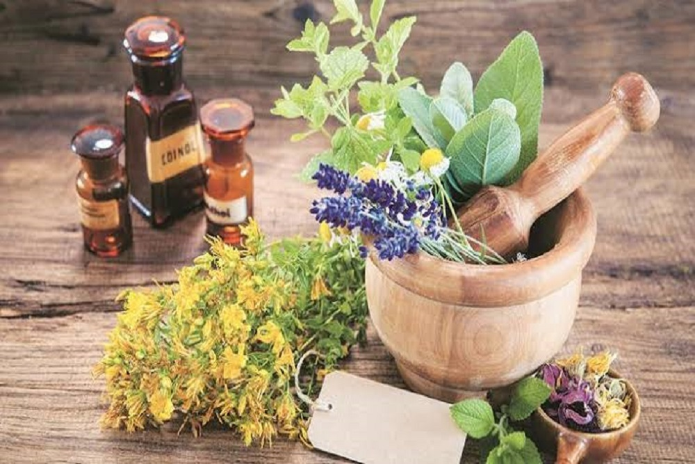 Plantsmedecine