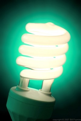 Fluorescent bulbs contain mercury, so proper disposal is critical.
