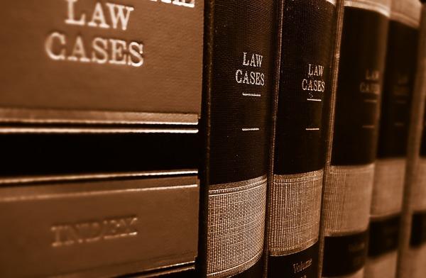 Large lawcasesbooks