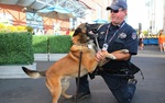 The Radford City Police Department has four K-9 teams.