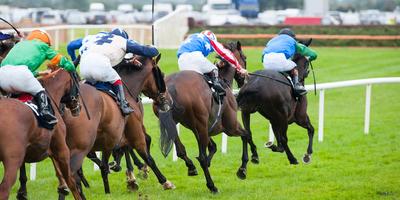 Medium horse racing