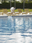 Keeping your pool clean is imperative to make sure its systems run properly.