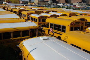Medium school buses