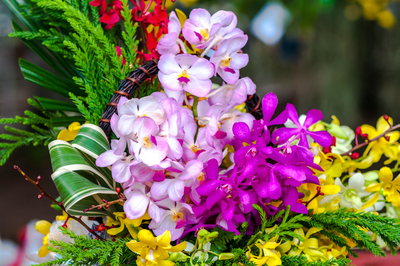 Floral arrangements based on beloved children's books will be the focus of the Violet Crown Garden Club's show.