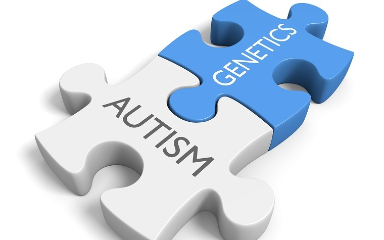 Knowledge, patience and flexibility are necessary to handle autism communication successfully.