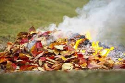 Medium leafburning