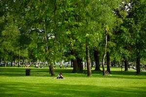 Medium parksandrecreation