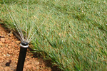 Routine check-ups on a sprinkler system can save time and money in the long run.