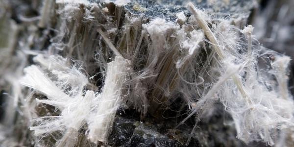 Large asbestos 03