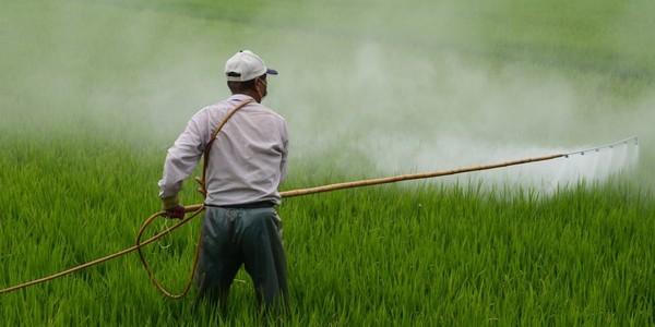 Large pesticides1280